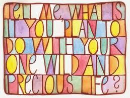 Dime, ¿qué es lo que planeas hacer con tu vida salvaje y preciosa? | Mary Oliver